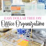 Dollar tree organization ideas