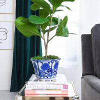 DIY Faux Fiddle Leaf Branch Plant