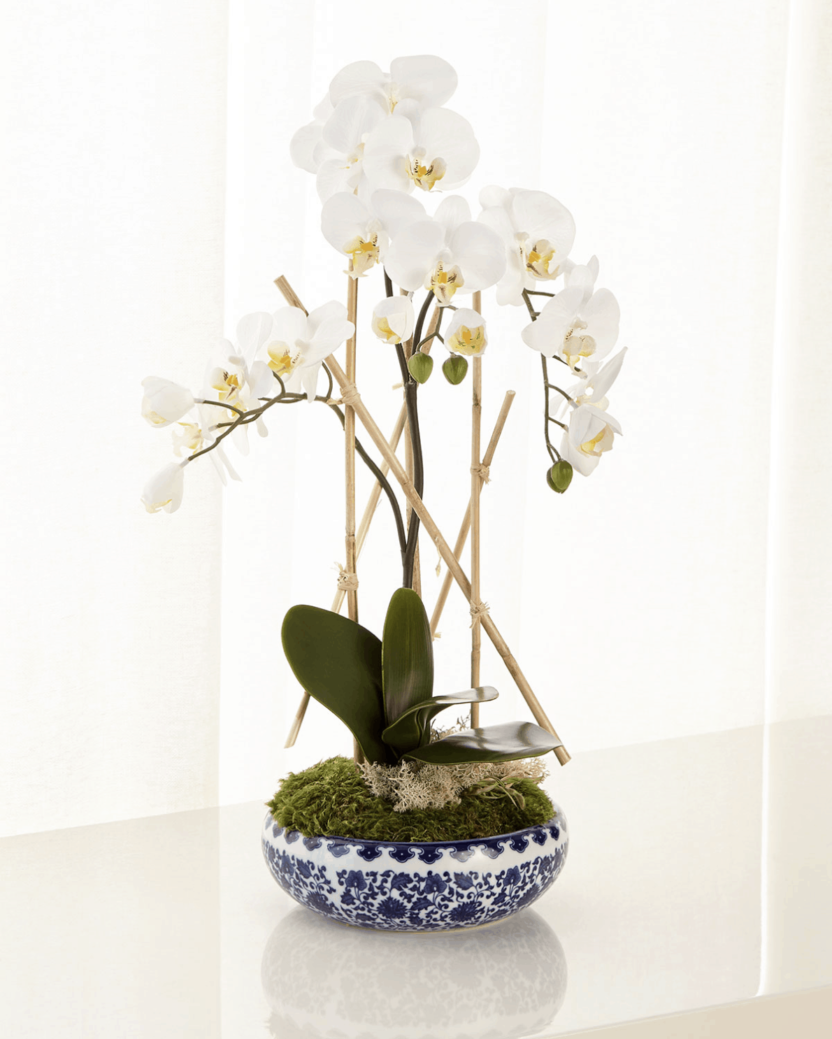 Blue and white potted orchid arrangement