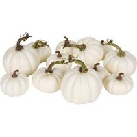 One Holiday Way Artificial White Pumpkins Wedding Decor Fall Table Decoration, 12 Piece Set