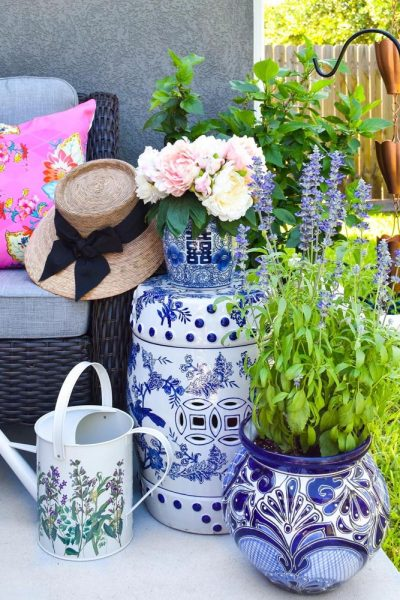 Container Gardening Mistakes