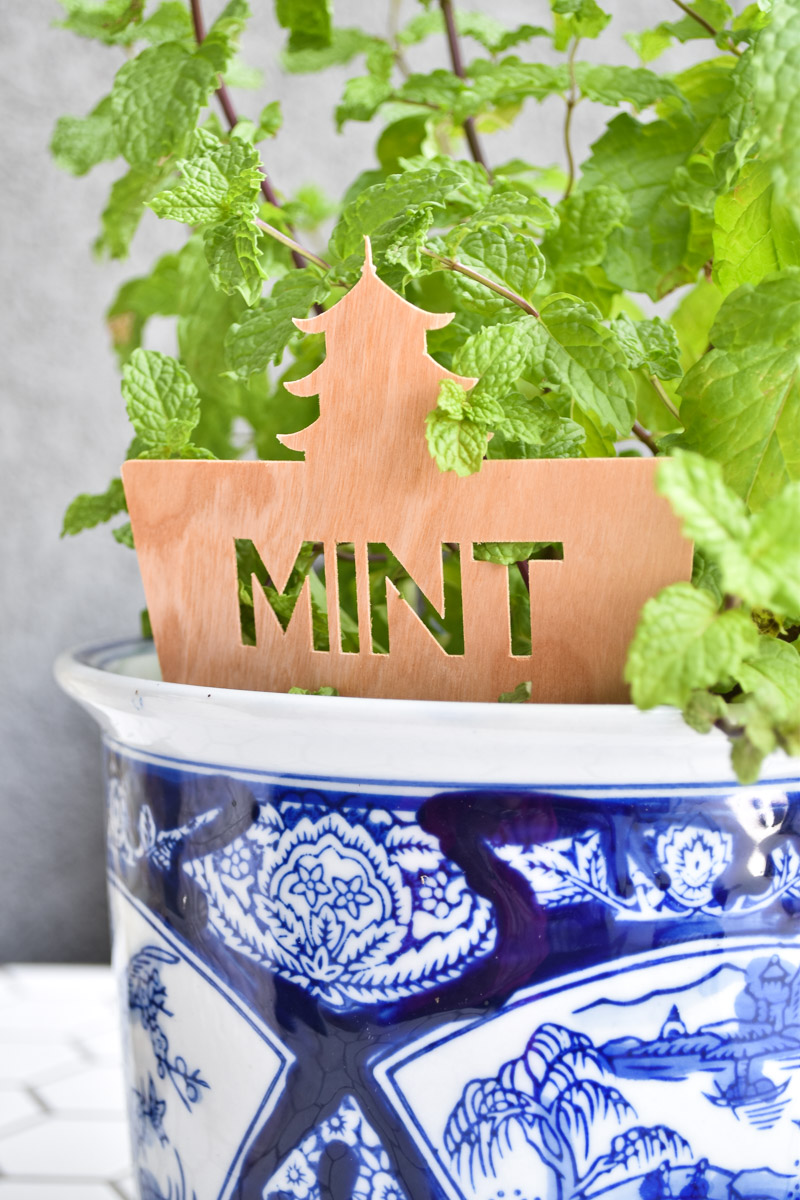 DIY garden markers for plants using the Cricut Maker and wood sheets